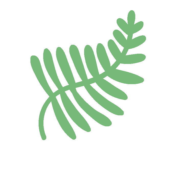 fern by Andrea Younes from the Noun Project